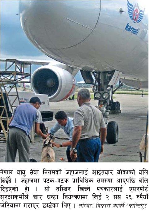 nepal-airlines-goat-sacrifice.jpg