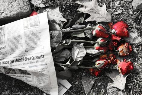 dead_roses.jpg